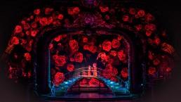 Duo d'amour dans un écrin de roses. (Photo: Cirque du Soleil)
