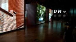 Des projections sur les surfaces des cubes au centre de l'exposition.